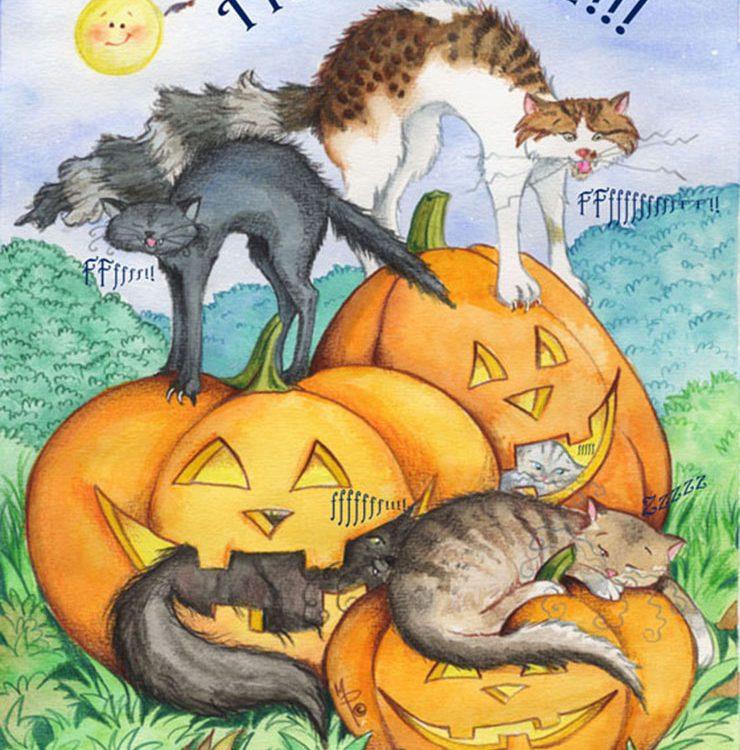 Gatti di Halloween