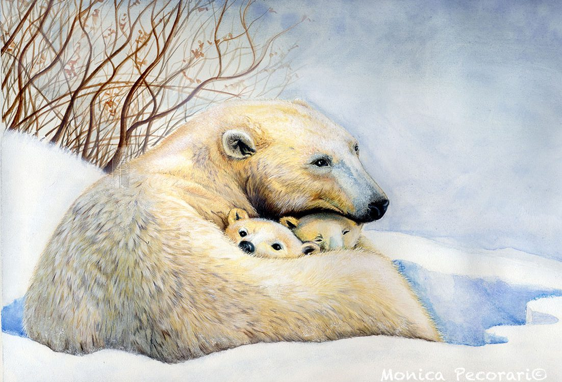 Orso polare, ursus maritimus, mamma con cuccioli