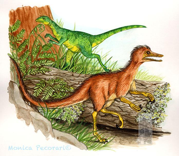 Sinosauropterix e Compsognato